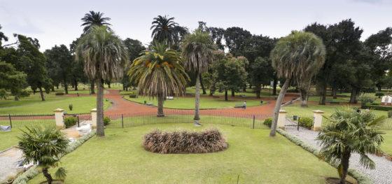 Parque Avellaneda: empiezan a construir la pista aeróbica del parque